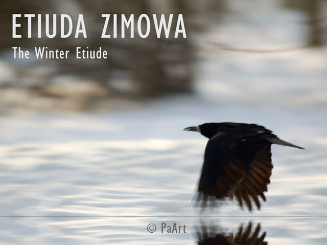 Etiuda zimowa / The Winter Etude